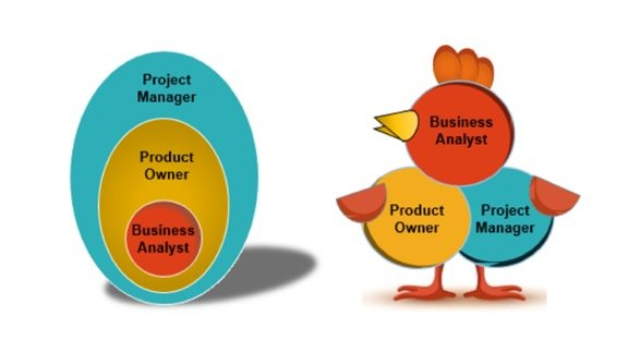 Business Analyst or Product Owner? Chicken or Egg?